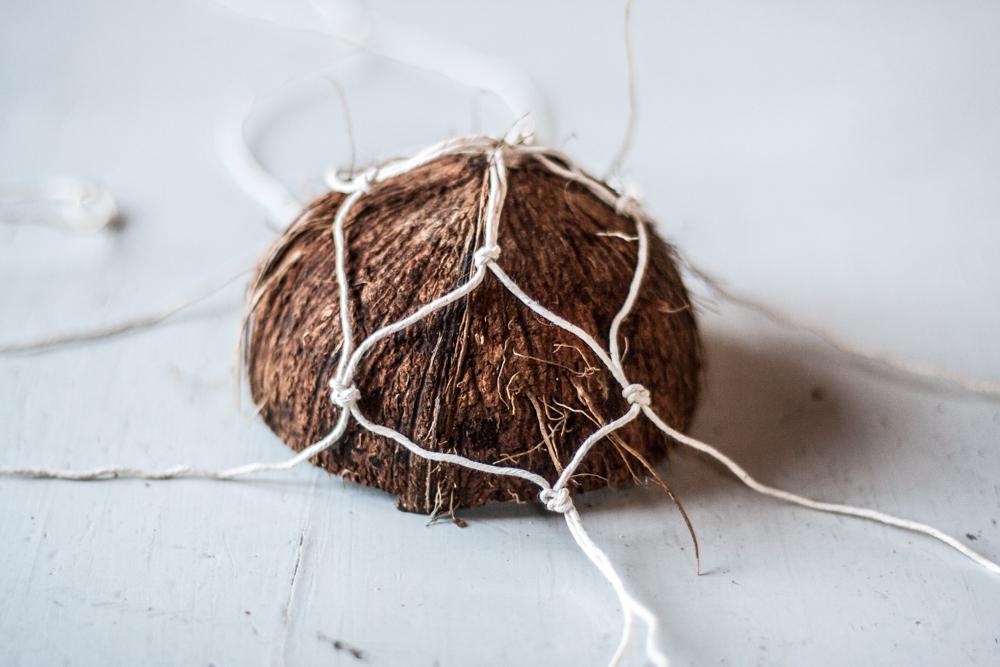 coconut nest-12