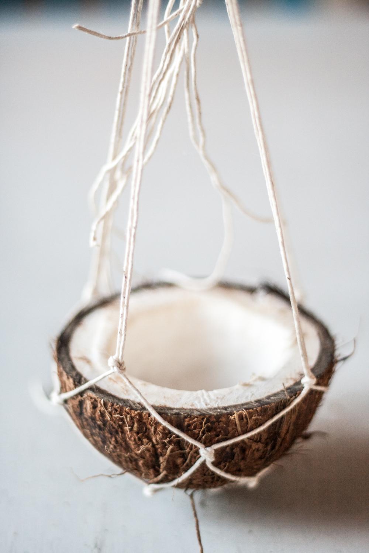 coconut nest-15