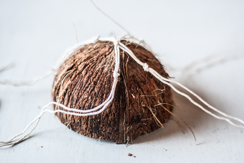 coconut nest-6
